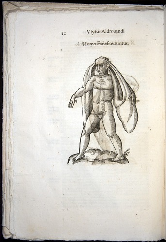 Image of Aldrovandi-1570-0010