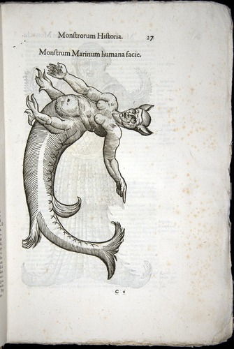 Image of Aldrovandi-1570-0027