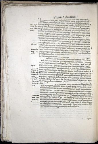 Image of Aldrovandi-1570-0044