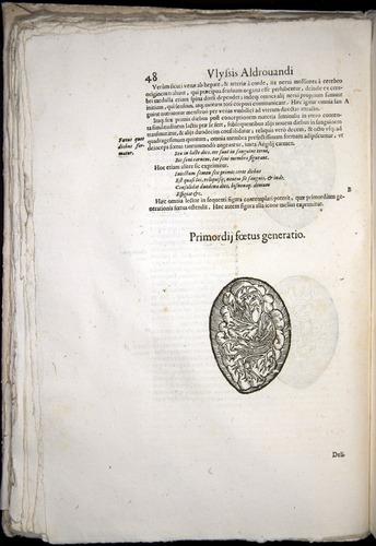 Image of Aldrovandi-1570-0048