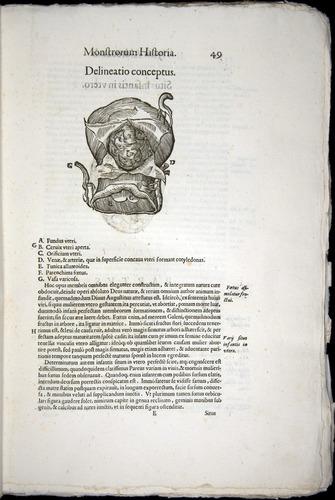 Image of Aldrovandi-1570-0049