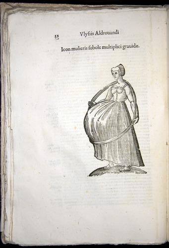 Image of Aldrovandi-1570-0052