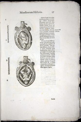 Image of Aldrovandi-1570-0057