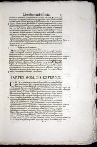 Image of Aldrovandi-1570-0075