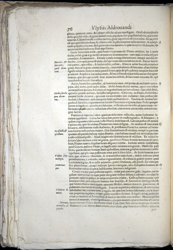 Image of Aldrovandi-1570-0076