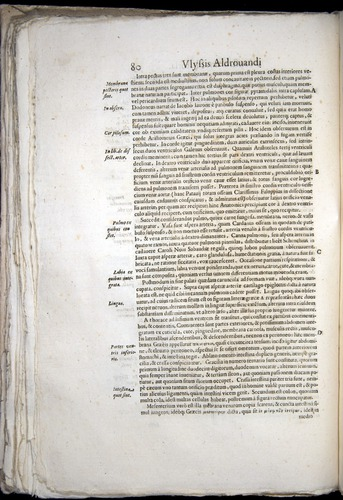 Image of Aldrovandi-1570-0080