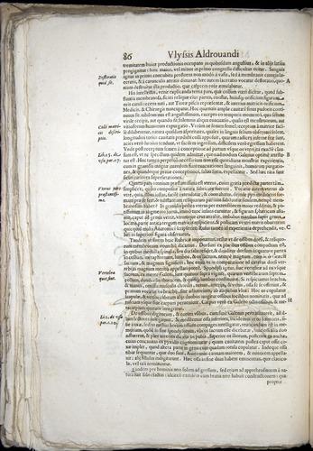 Image of Aldrovandi-1570-0086