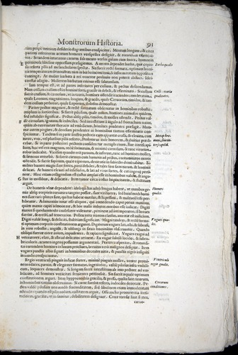 Image of Aldrovandi-1570-0091