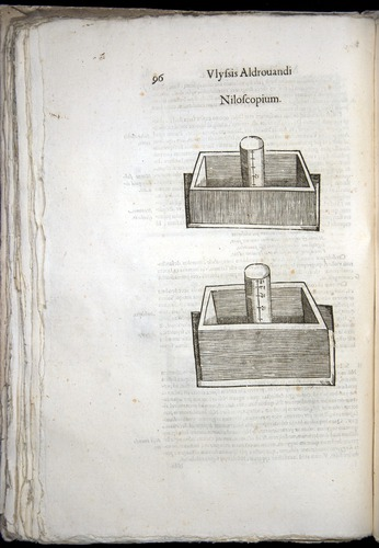 Image of Aldrovandi-1570-0096