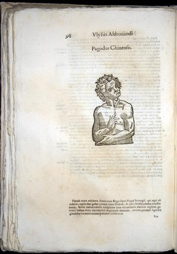 Image of Aldrovandi-1570-0098