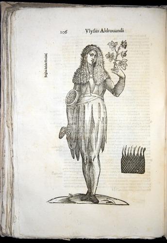 Image of Aldrovandi-1570-0106