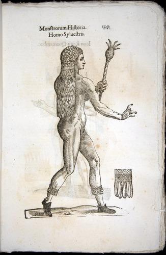 Image of Aldrovandi-1570-0107