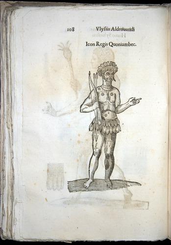 Image of Aldrovandi-1570-0108