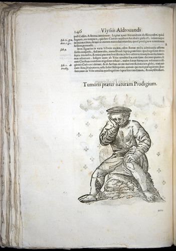 Image of Aldrovandi-1570-0146