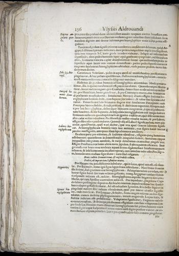 Image of Aldrovandi-1570-0156