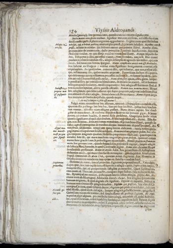 Image of Aldrovandi-1570-0174
