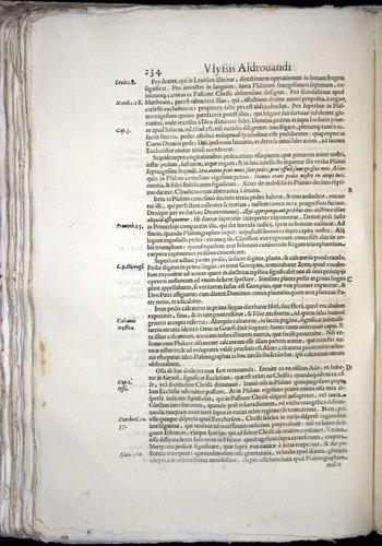 Image of Aldrovandi-1570-0234