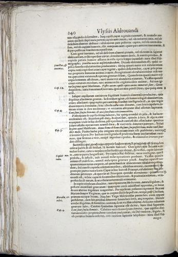 Image of Aldrovandi-1570-0240