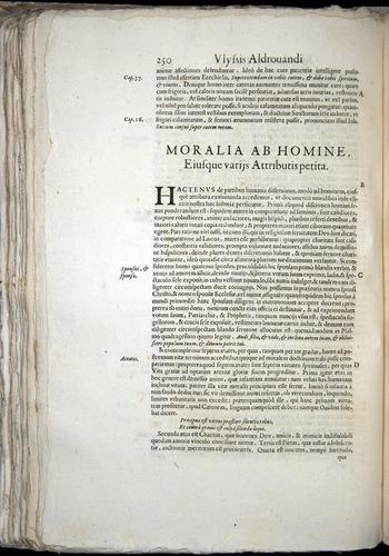 Image of Aldrovandi-1570-0250