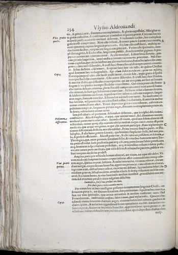Image of Aldrovandi-1570-0254