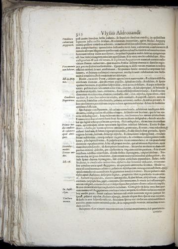 Image of Aldrovandi-1570-0312
