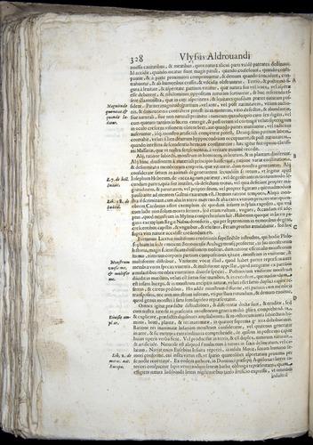 Image of Aldrovandi-1570-0328