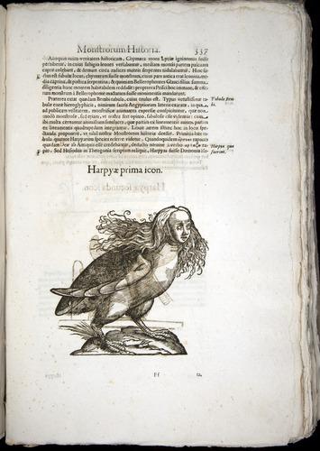 Image of Aldrovandi-1570-0337