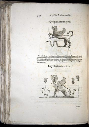Image of Aldrovandi-1570-0342