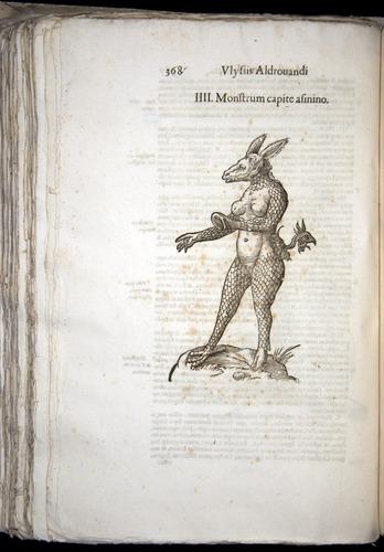 Image of Aldrovandi-1570-0368