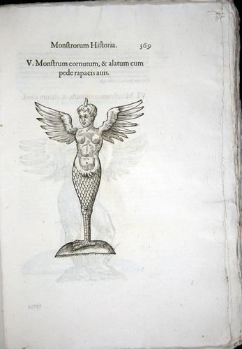 Image of Aldrovandi-1570-0369