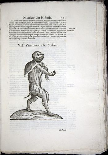 Image of Aldrovandi-1570-0371