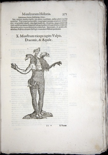 Image of Aldrovandi-1570-0375