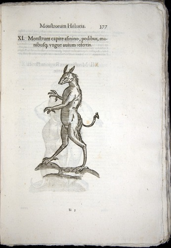 Image of Aldrovandi-1570-0377
