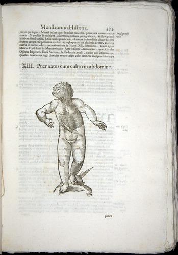 Image of Aldrovandi-1570-0379
