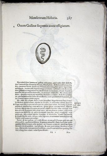 Image of Aldrovandi-1570-0387