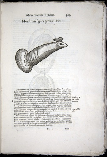 Image of Aldrovandi-1570-0389