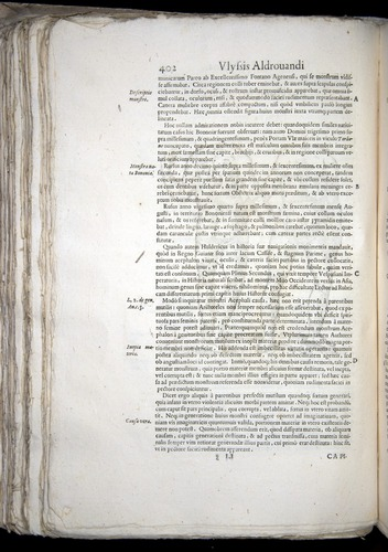 Image of Aldrovandi-1570-0402
