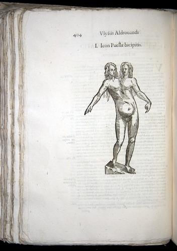Image of Aldrovandi-1570-0404