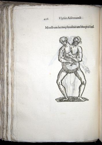 Image of Aldrovandi-1570-0406