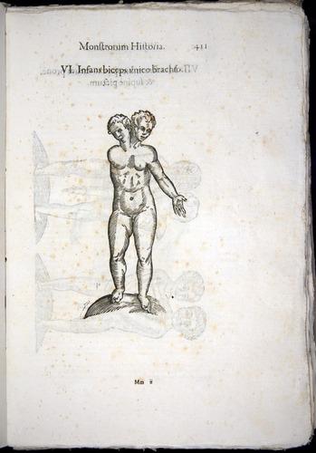 Image of Aldrovandi-1570-0411