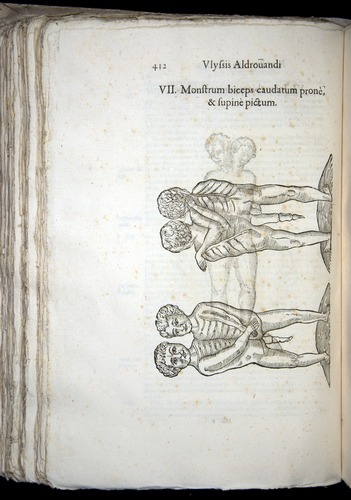 Image of Aldrovandi-1570-0412