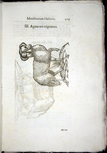 Image of Aldrovandi-1570-0419