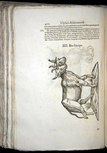 Image of Aldrovandi-1570-0420