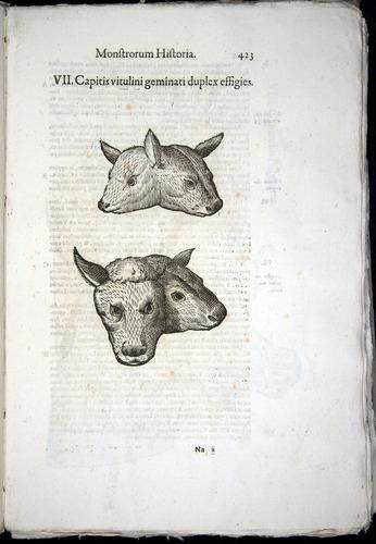 Image of Aldrovandi-1570-0423