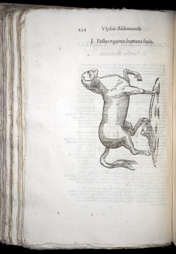 Image of Aldrovandi-1570-0434