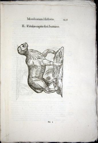 Image of Aldrovandi-1570-0435