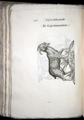 Image of Aldrovandi-1570-0436