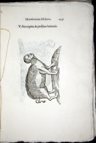 Image of Aldrovandi-1570-0439