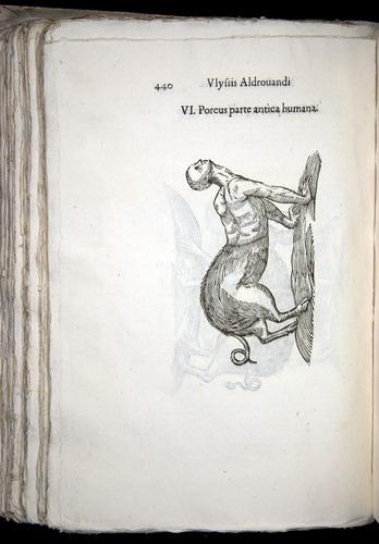 Image of Aldrovandi-1570-0440