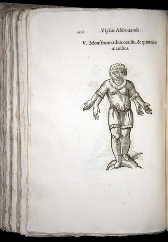 Image of Aldrovandi-1570-0452